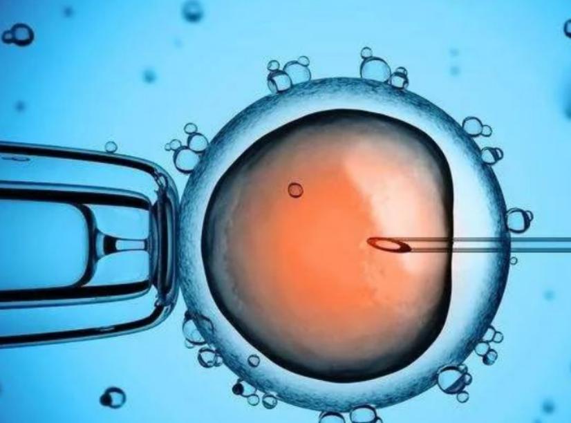 第三代试管婴儿PGD与PGS的区别-华夏试管网