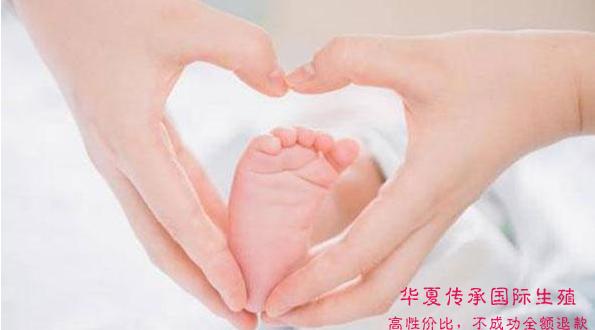 哪家做试管婴儿好?多少钱可以避免宫外孕?-华夏试管网