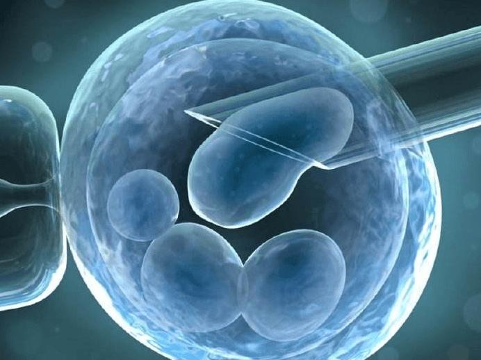 试管婴儿宝宝会特别聪明吗?这几个因素严重影响试管婴儿智力-华夏试管网