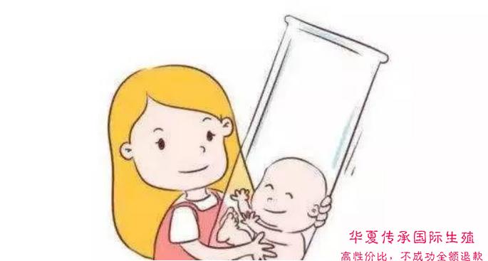 试管婴儿和人工授精-华夏试管网